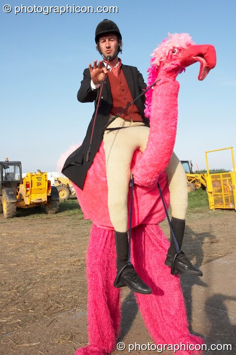 A man on stilits rides a pink camel at Sunrise Celebration 2007. Yeovil, Great Britain. © 2007 Photographicon