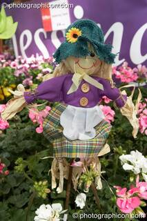 A rag doll amongst the flowers on Chessington Garden Centre's stall at Kingston Green Fair 2006. Kingston upon Thames, Great Britain. © 2006 Photographicon