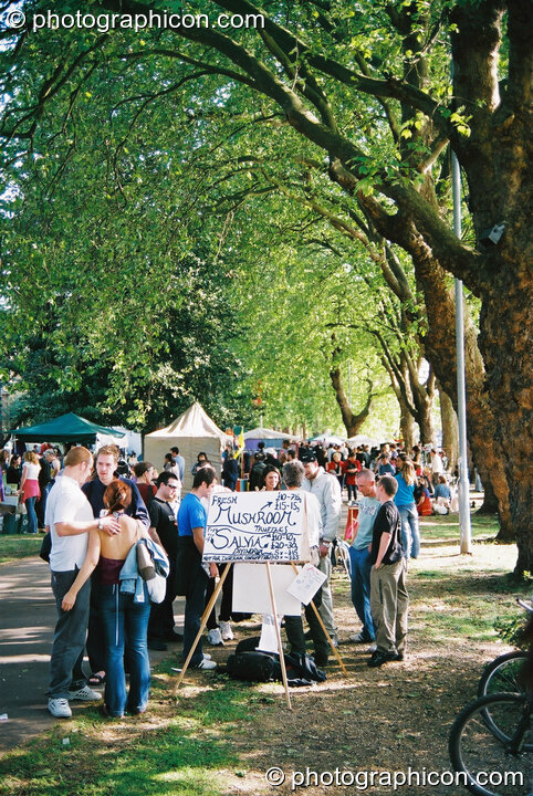 A stall in a long avenue of trees by the River Thames at Kingston Green Fair 2003. Kingston upon Thames, Great Britain. © 2003 Photographicon