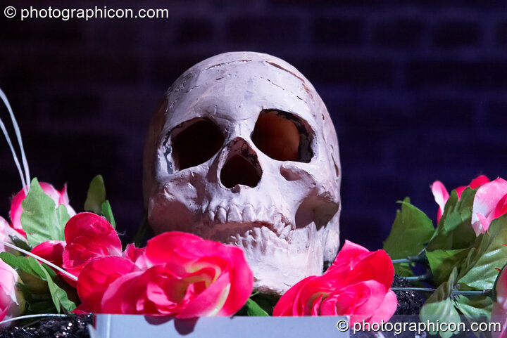 A skull on the ritual shrine at The Halloween of the Cross Bones XIII. London, Great Britain. © 2010 Photographicon