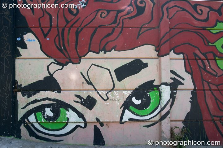 Mural of a face on a wall in Observatory, Cape Town - Western Cape, South Africa. © 2005 Photographicon