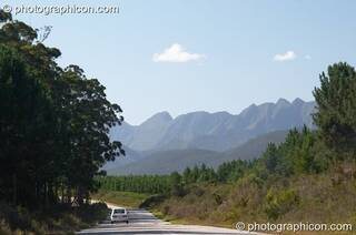 View of mountain range between trees on the road somewhere in Western Cape, South Africa. © 2005 Photographicon